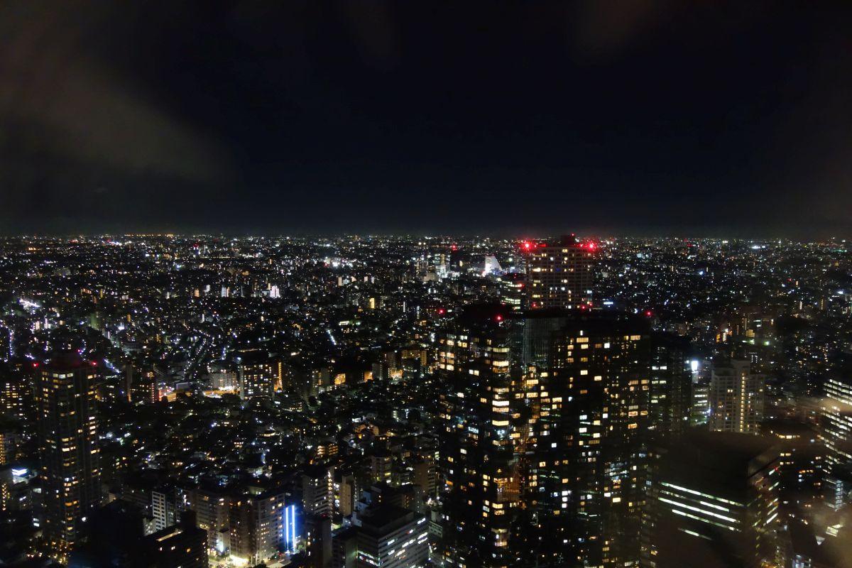 Ausblick auf Tokyo bei Nacht #1